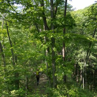 210501 入山峠への道