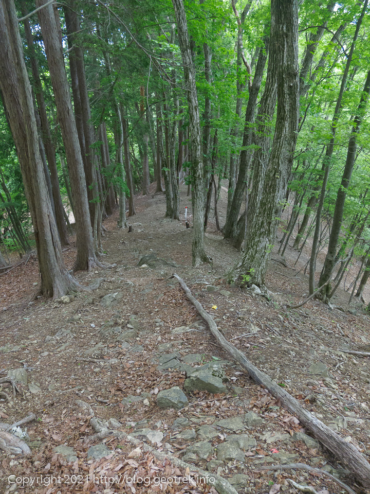 210529 倉戸山の下山路