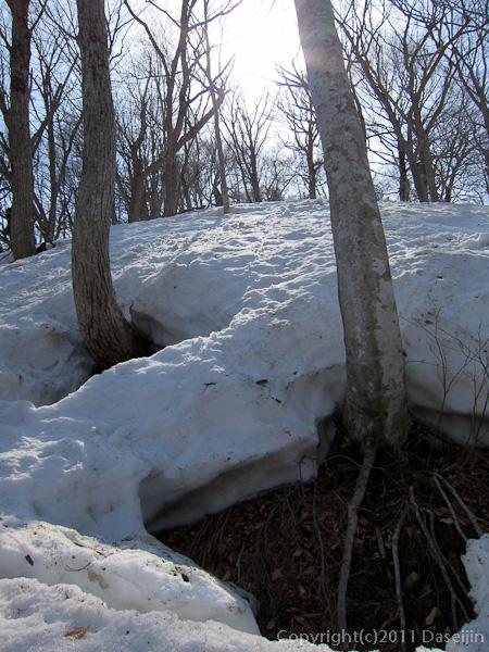120421会津駒ヶ岳・雪も融けて地面が見え始める