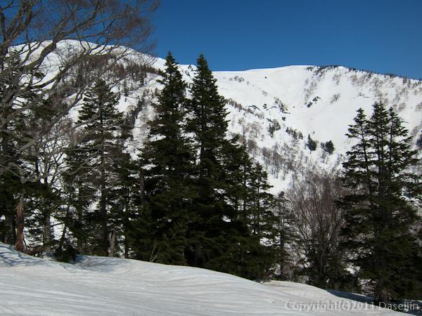 120421会津駒ヶ岳・登山道から大戸沢岳