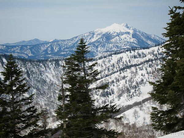 120421会津駒ヶ岳・登山道から燧が見えた