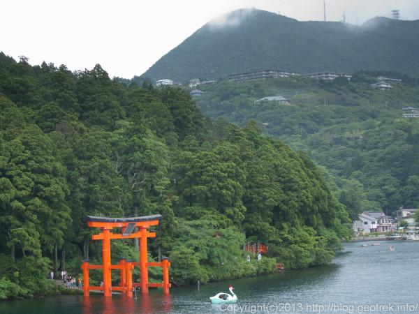 芦ノ湖のスワン