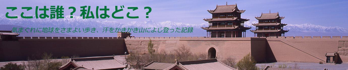 ここは誰?私はどこ?