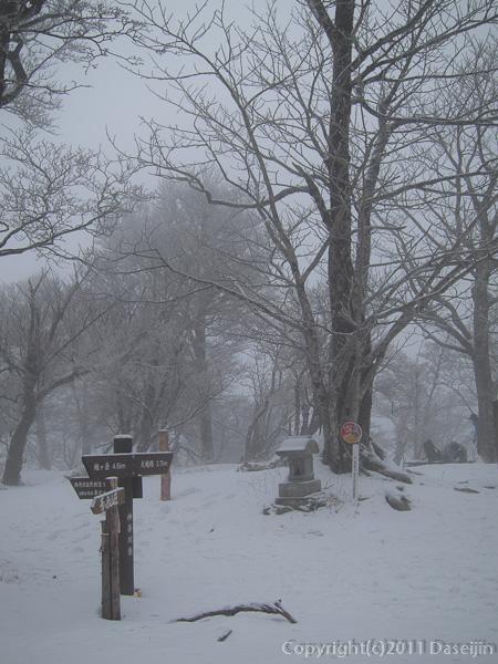 120226雪の檜洞丸山頂