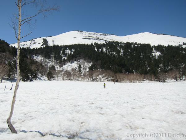 120428平ヶ岳・背中アブリ田代から至仏山