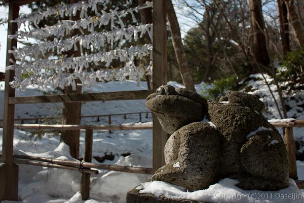 120213世界遺産平泉・中尊寺蛙の狛犬