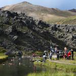 ワタスゲに囲まれた露天風呂~アイスランド&グリーンランド(13)