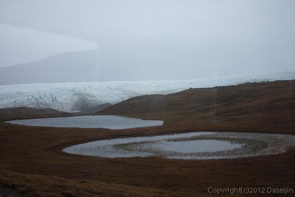 120814アイスランド、グリーンランドの旅・湿原