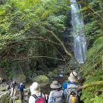 ワイガヤ川苔山ハイキング~川苔山