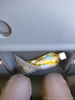 120403熊本・機内座席のネット