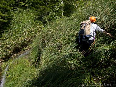 120915小赤沢・4mハング滝は巻く