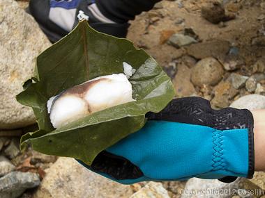 121006恋ノ岐・行動食は柿の葉ずし