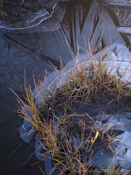 121008恋ノ岐・湿原に氷が張る