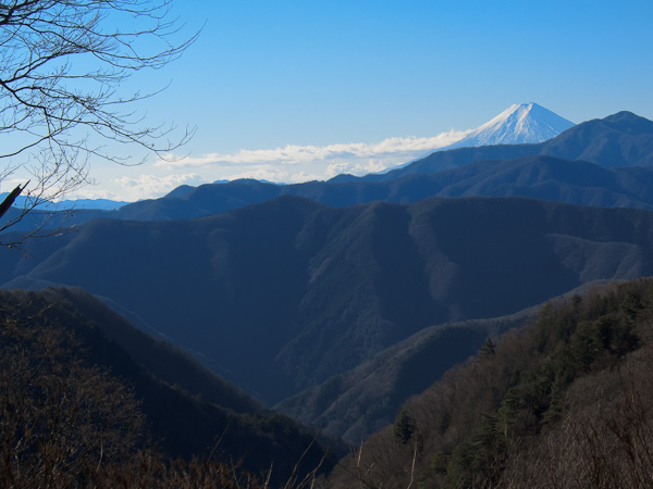 120107雲取山・登り尾根七ツ石小屋下からの富士山