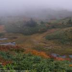 湿原に始まり湿原に終わる~三ツ石山、乳頭山周回縦走(4)