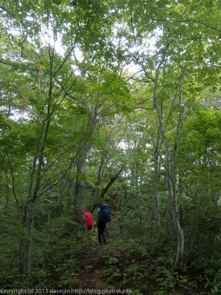 三ツ石山へ深い森林の道を歩く