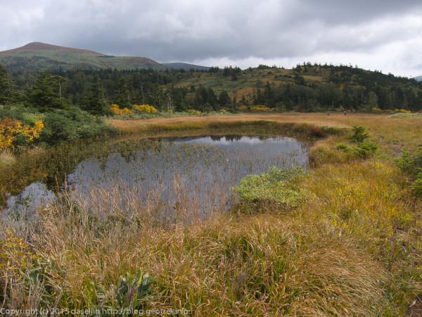 田代岱の池塘