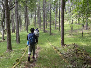120623瑞牆山・もうすぐ自然公園