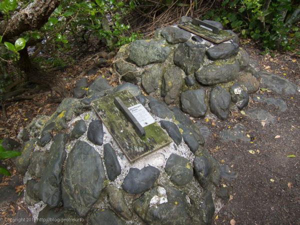 ティリティリマタンギ・アイランド、ペンギンの巣。