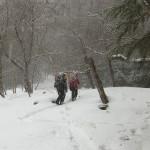 手堅い?正月山行~甲武信岳から金峰山(1)