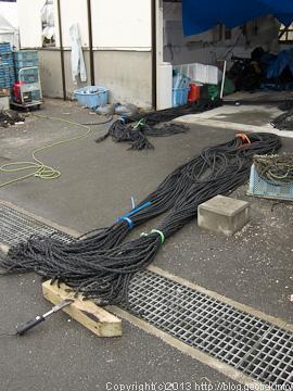 130125牡蠣棚のロープ