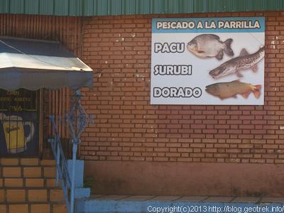130828プエルト・イグアスの魚