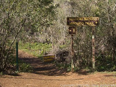 130827イグアスの滝・MacucoTrail
