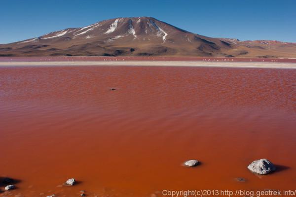 130903アタカマ砂漠、ラグーナ・コロラダ1