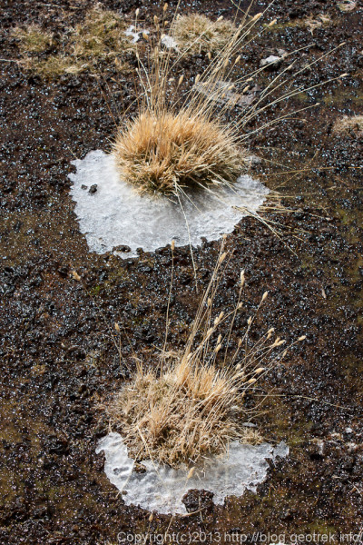 130904アタカマ砂漠、ラグーナ・カニャパの氷