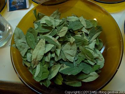 130908ボリビア、ホテルの朝食、コカの葉