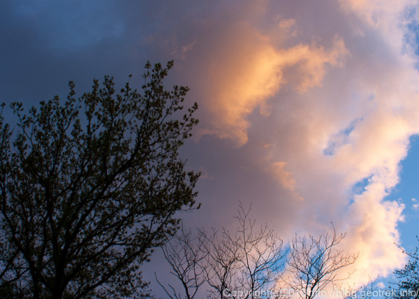 夕日に染まる雲