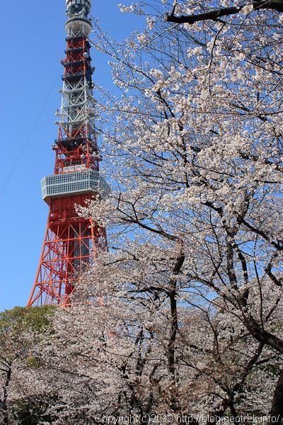 shibakoen_130321-6