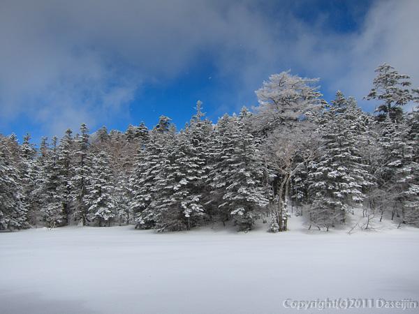 120325日光白根山・七色平の雪原