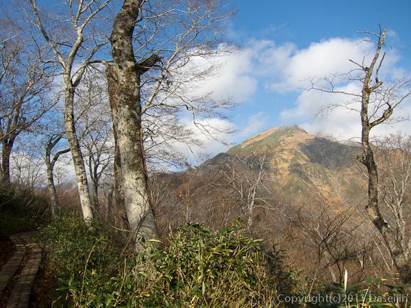 111104谷川岳・熊穴沢への道