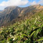 快晴のトマノ耳~谷川岳から三国峠(1)