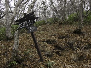 111105谷川岳・大源太山への分岐
