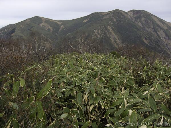 111105谷川岳・大源太山から仙ノ倉山