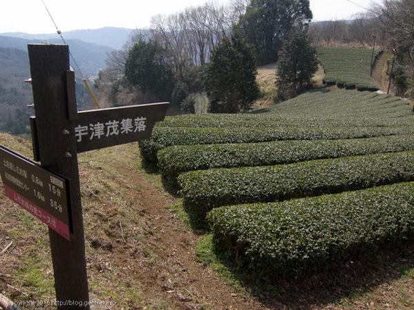 宇津茂集落への道標