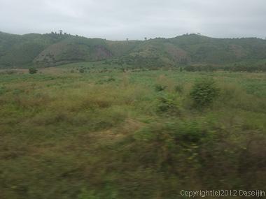 121114ベトナム・緑の荒野が続く