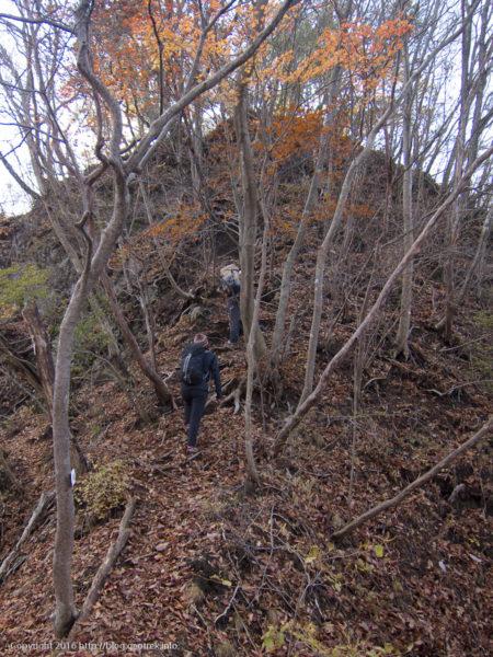 谷急沢~終了点から谷急山を目指す。