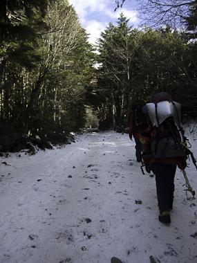 111227八ヶ岳・赤岳鉱泉への林道